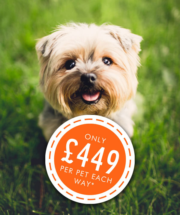 easyPet From £449